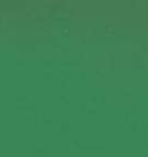 U155PE Zelená