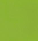 U3112PE Zelená limetka